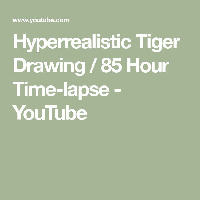 Hyperrealistic Tiger Drawing  85 Hour Timelapse  YouTube Hyperrealistic Tiger Drawing  85 Hour Timelapse  YouTube