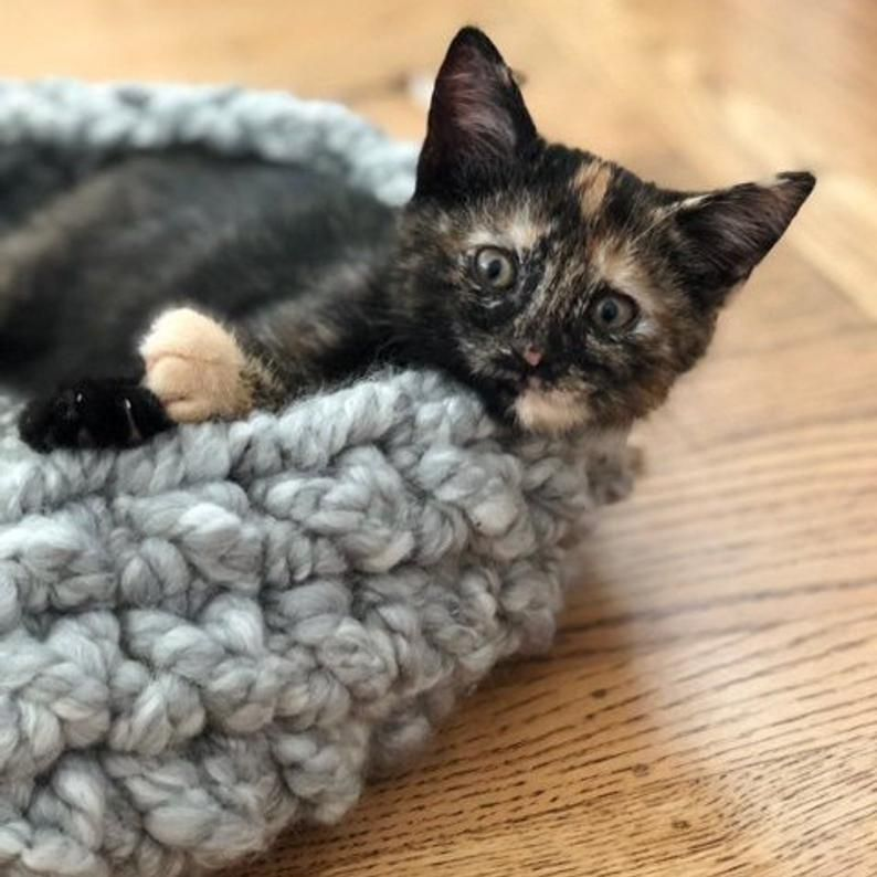 Pattern Only Crochet Chunky Cat Pet Chunky Knit Pet Bed Etsy Dog Beds For Small Dogs Pets Cats Chunky Crochet
