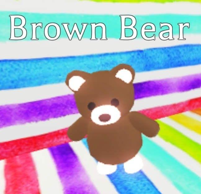 Neon Brown Bear In 2020 Pet Adoption Certificate Pets Drawing