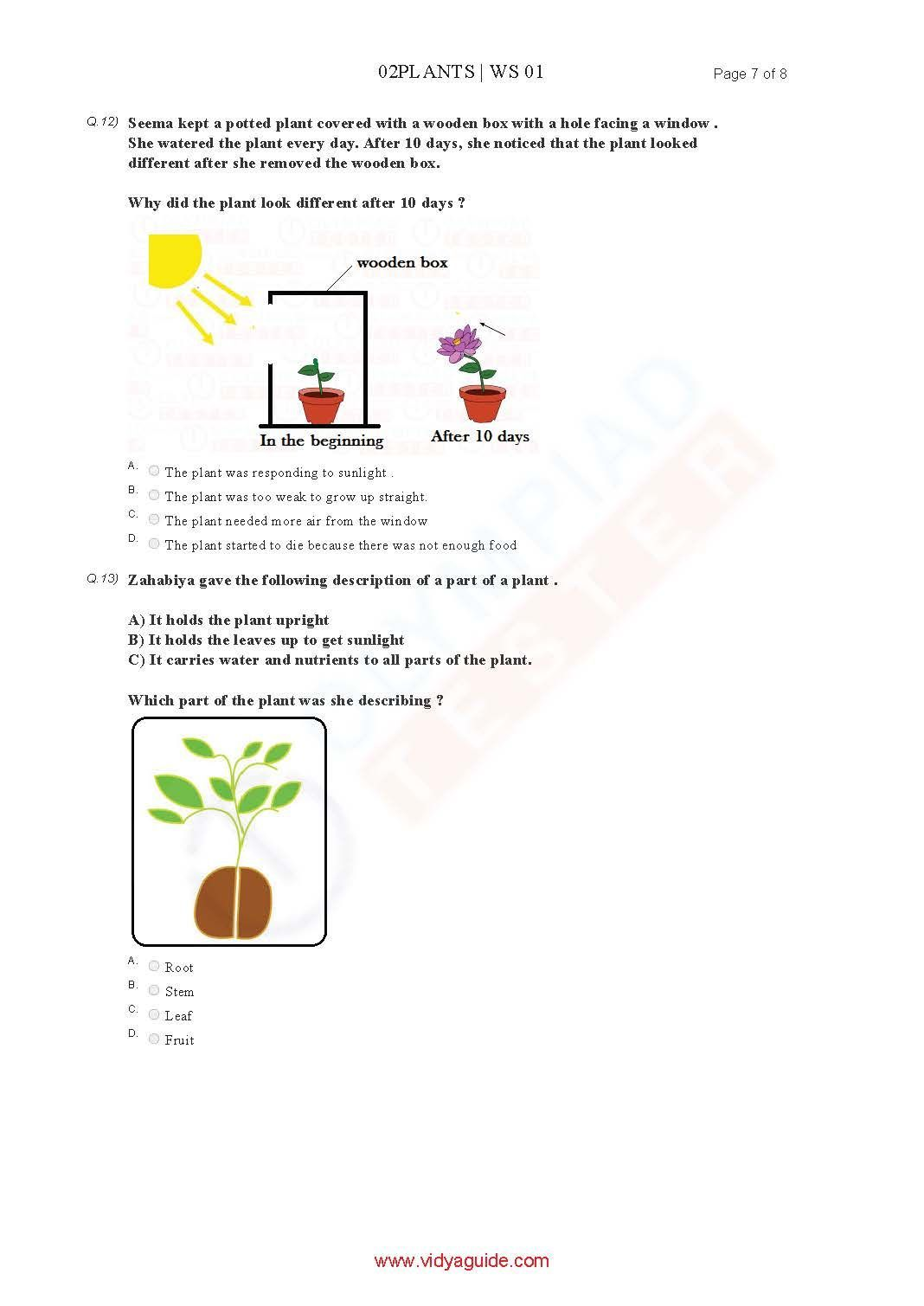 Download Grade 2 Science Olympiad Sample Papers As