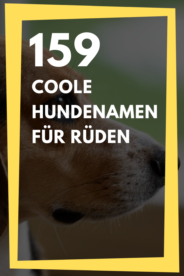 159 Male Dog Names For Males Dog Hundenamen Male Males Names In 2020 Hundenamen Hundenamen Fur Ruden Hunde Namen Mannlich