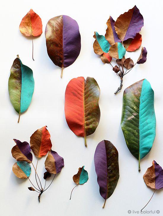 Guirnalda de Hojas Pintadas Guirnalda de hojas, Hojas pintadas y