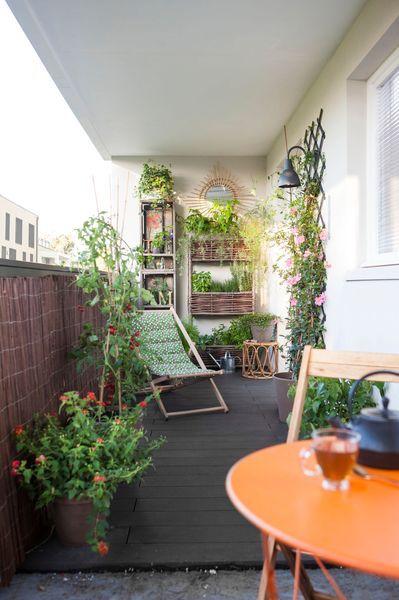 Jardin urbain contemporain : ustensile jardinage, mini potager ...