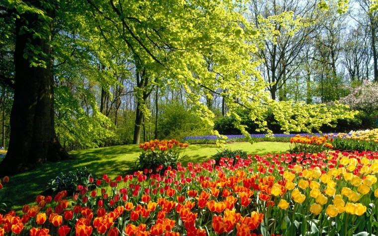 Free Download Spring Desktop Wallpaper Widescreen 1280x800 For Your Desktop Mobile Ta Spring Desktop Wallpaper Spring Wallpaper Beautiful Nature Wallpaper