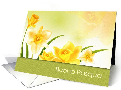 Buona pasqua spring daffodils easter greeting cards in italian with buona pasqua spring daffodils easter greeting cards in italian with personalized inside greeting at m4hsunfo