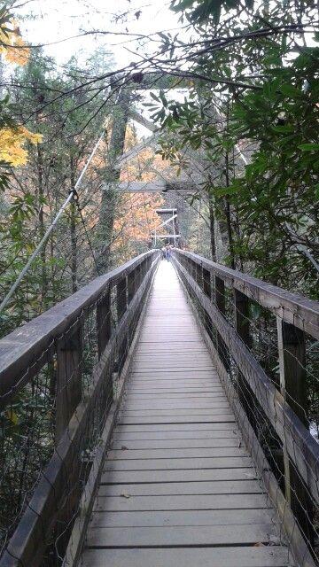 Hiking trails georgia swinging bridge phrase simply