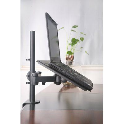 Symple Stuff Sarramea Fully Adjustable Extension Arms And Clamp Desk Mount Wayfair Laptop Desk Laptop Desk Stand Desk