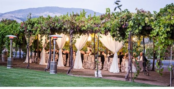 View This Lovely Vineyard Wedding At The Tadue Winery In Geyserville Ca Also Featured On Ceci New York Magazine