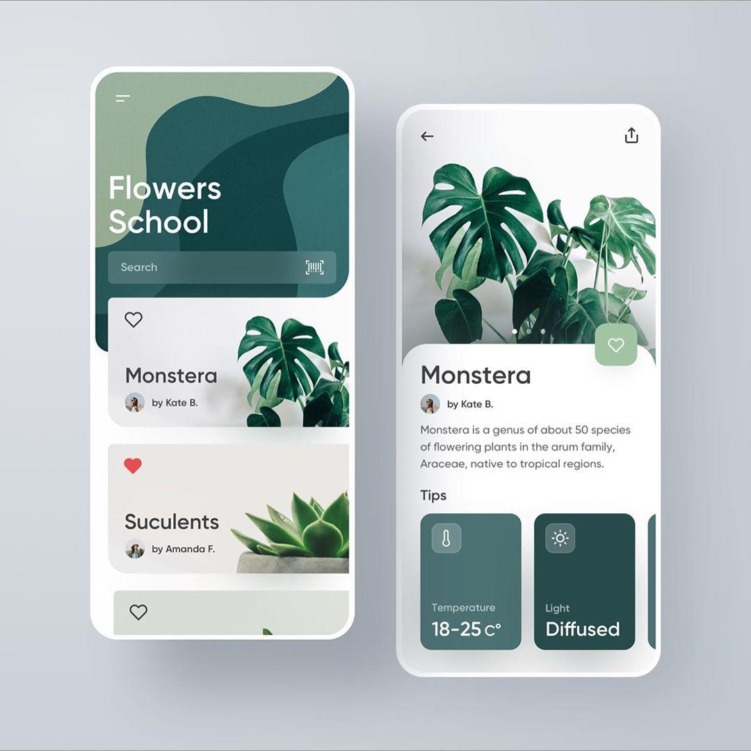 Flower School Plants Application .⠀ I love plants. They