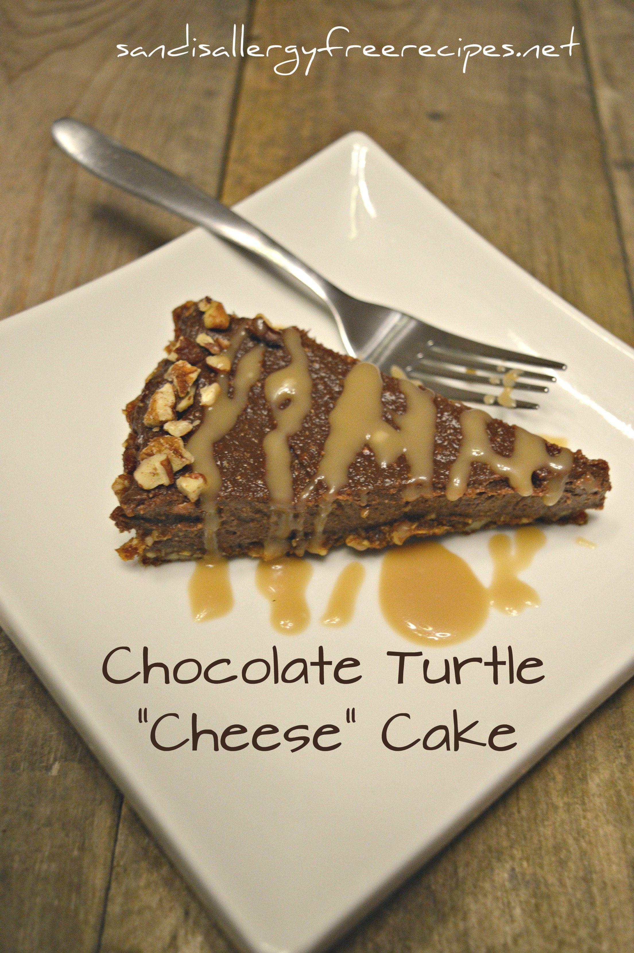 Chocolate Turtle Cheese Cake Paleo Vegan Dairy Free Gluten