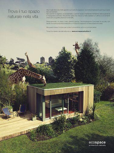 Il tetto giardino sul mio Ecospace: un'ottima ispirazione...