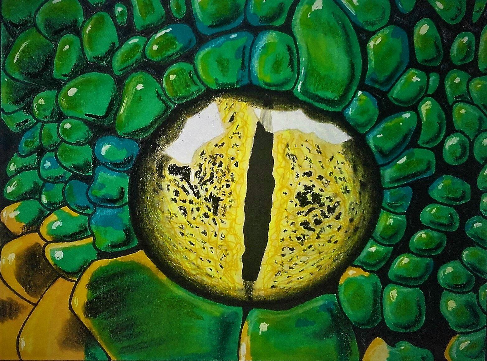 Oeil De Serpent Promarker Et Pastel Sec Art Pastel Painting