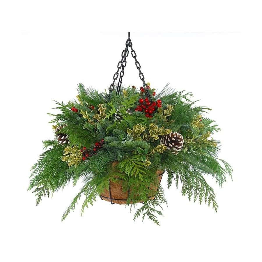 Flowers For Hanging Baskets In Winter : Fresh cut christmas hanging basket with pinecones