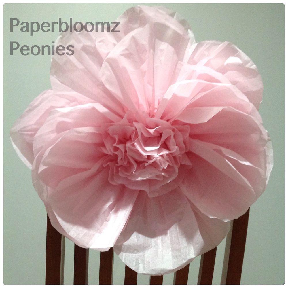 Paperbloomz large paper peonies x 5 bulk tissue paper flowers wall paperbloomz large paper peonies x 5 bulk tissue paper flowers wall decorations mightylinksfo