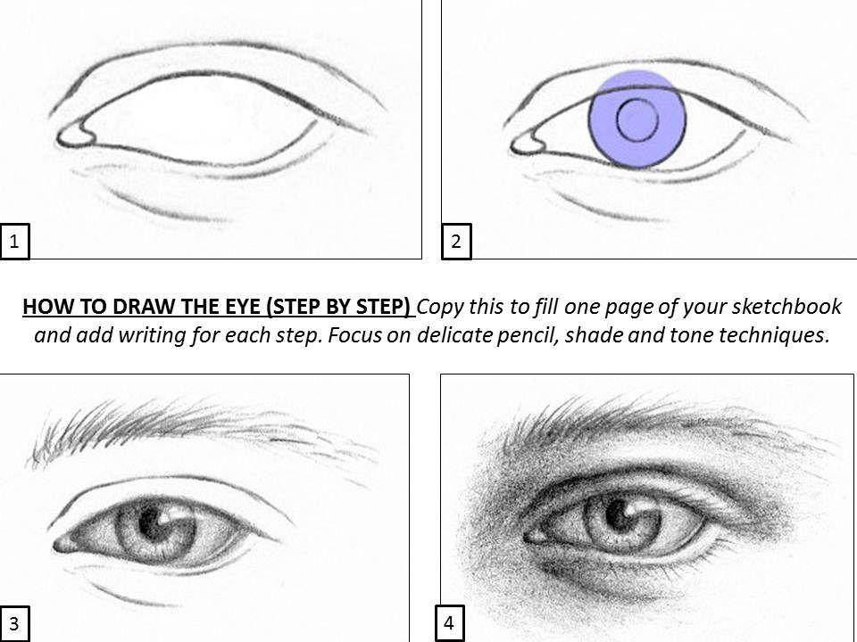 Step By Step Portrait Drawing Worksheet Safer Browser Yahoo Image