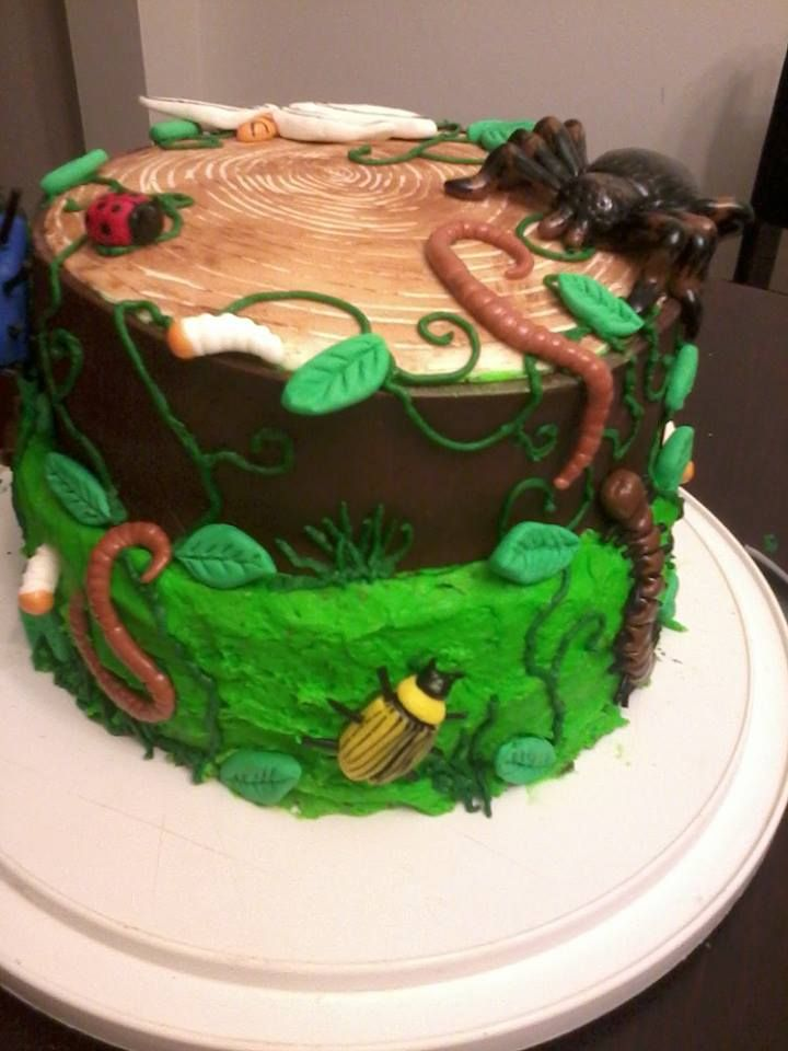 Magnificent Bear Grylls Man Vs Wild Cake Bug Birthday Cakes Wild Birthday Funny Birthday Cards Online Overcheapnameinfo