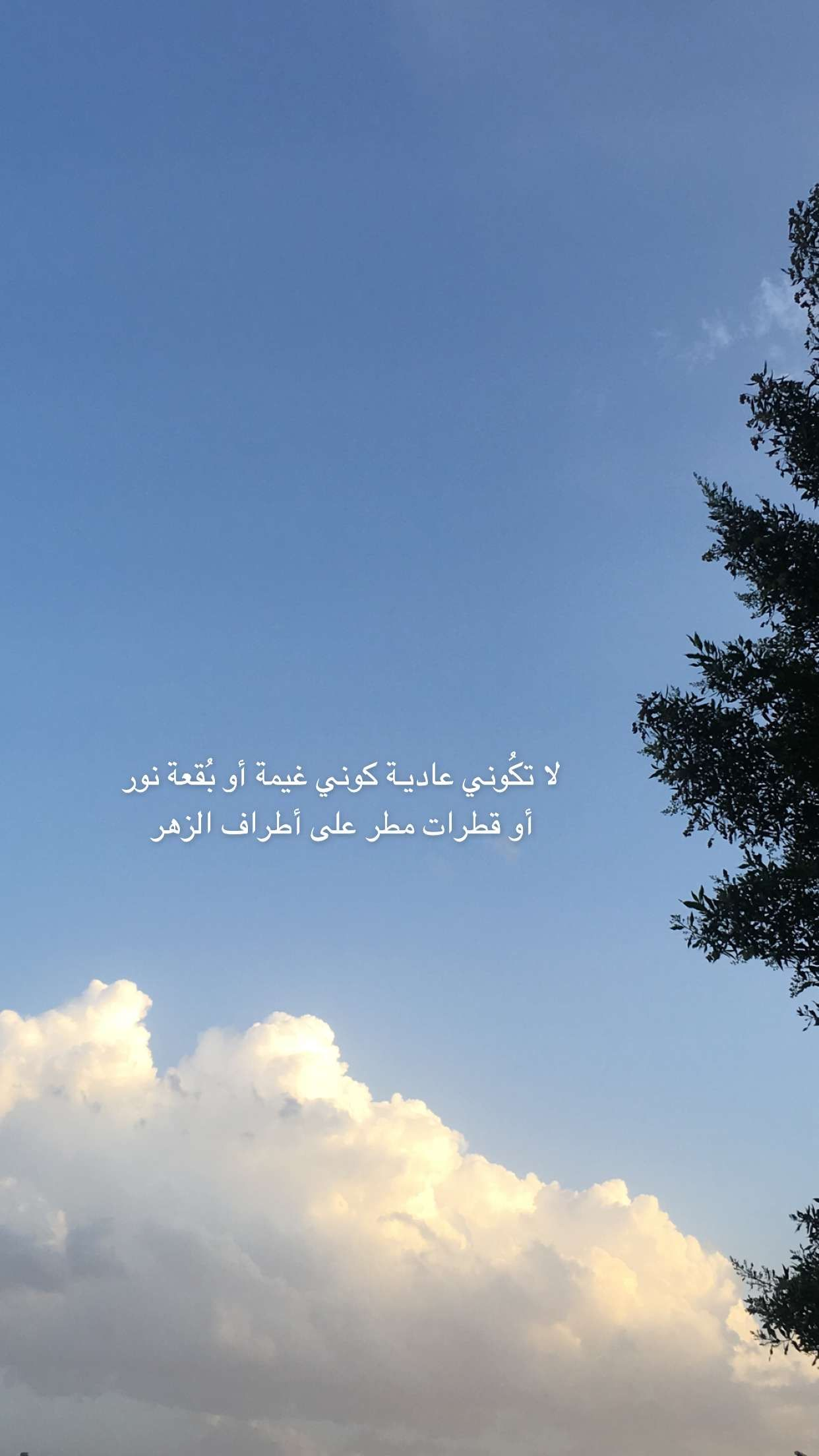 Pin By Hur On سنابات Book Quotes Scenery Clouds