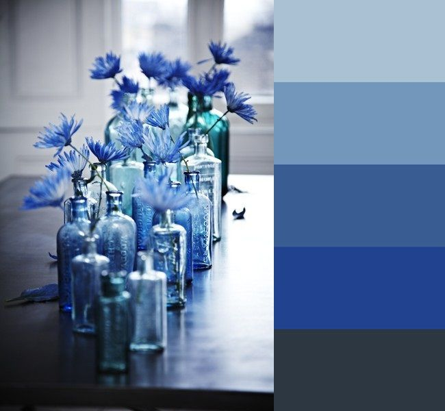 Cornflowers color palette
