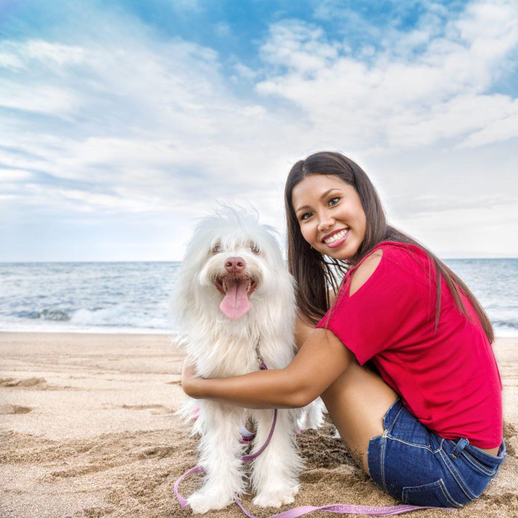 Dr Rachel Barrack Of Animal Acupuncture Shares Her Advice On How To Keep Your Pets Happy Healthy During The Summer Months These 5 Ti Pets Pet Life Your Pet