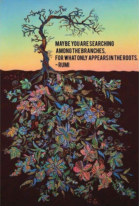 Maybe you are searching among the branches for what only appears in the roots- Rumi