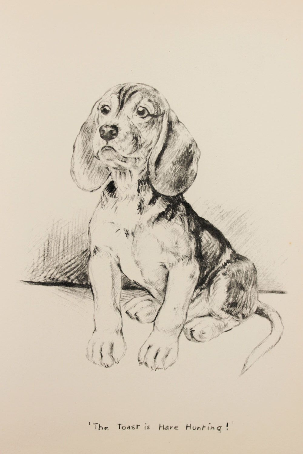 Pin By April Fox On Photos For Lilly To Draw Dog Print Art Dog
