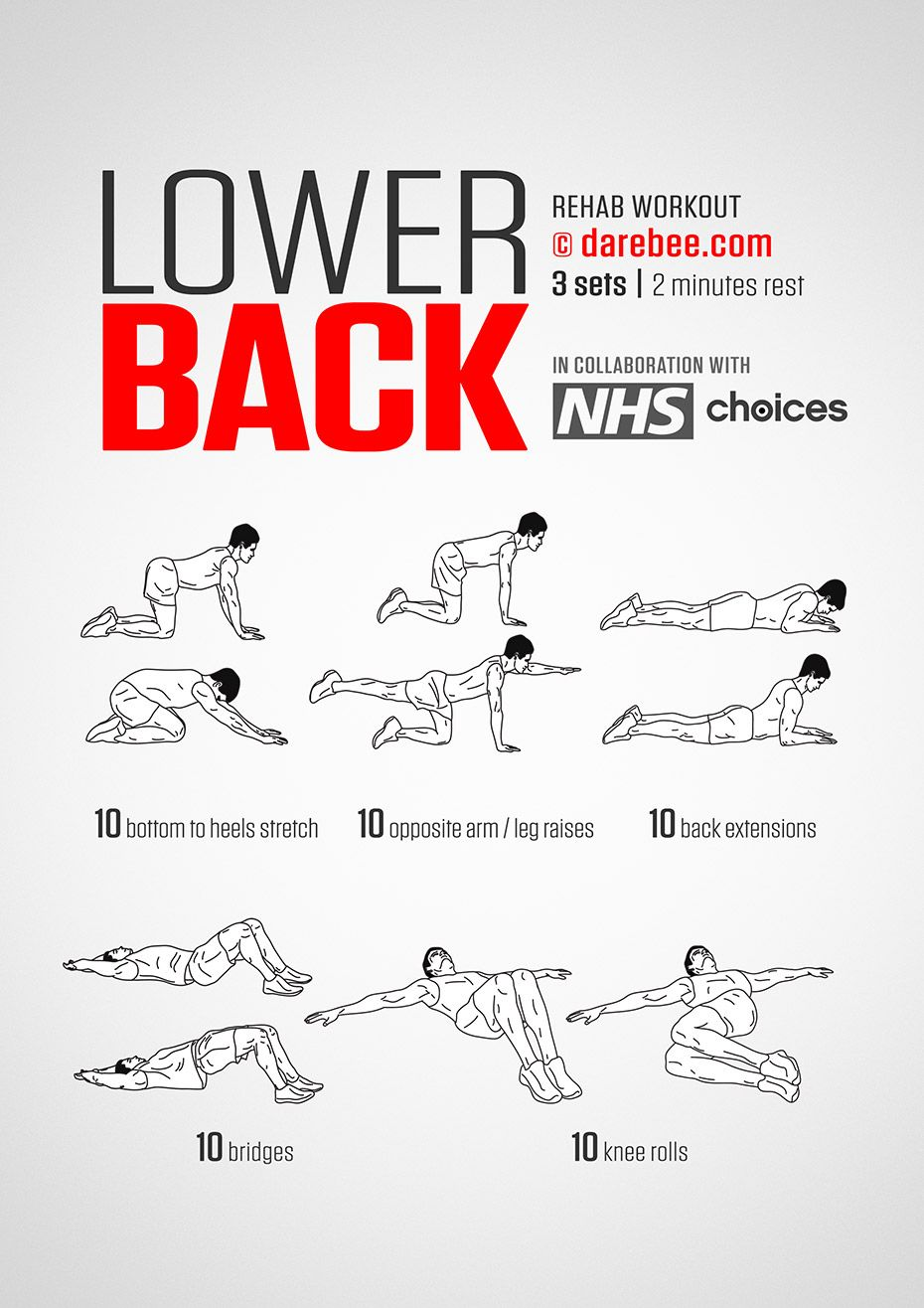 Lower Back Workout   Essa   Pinterest
