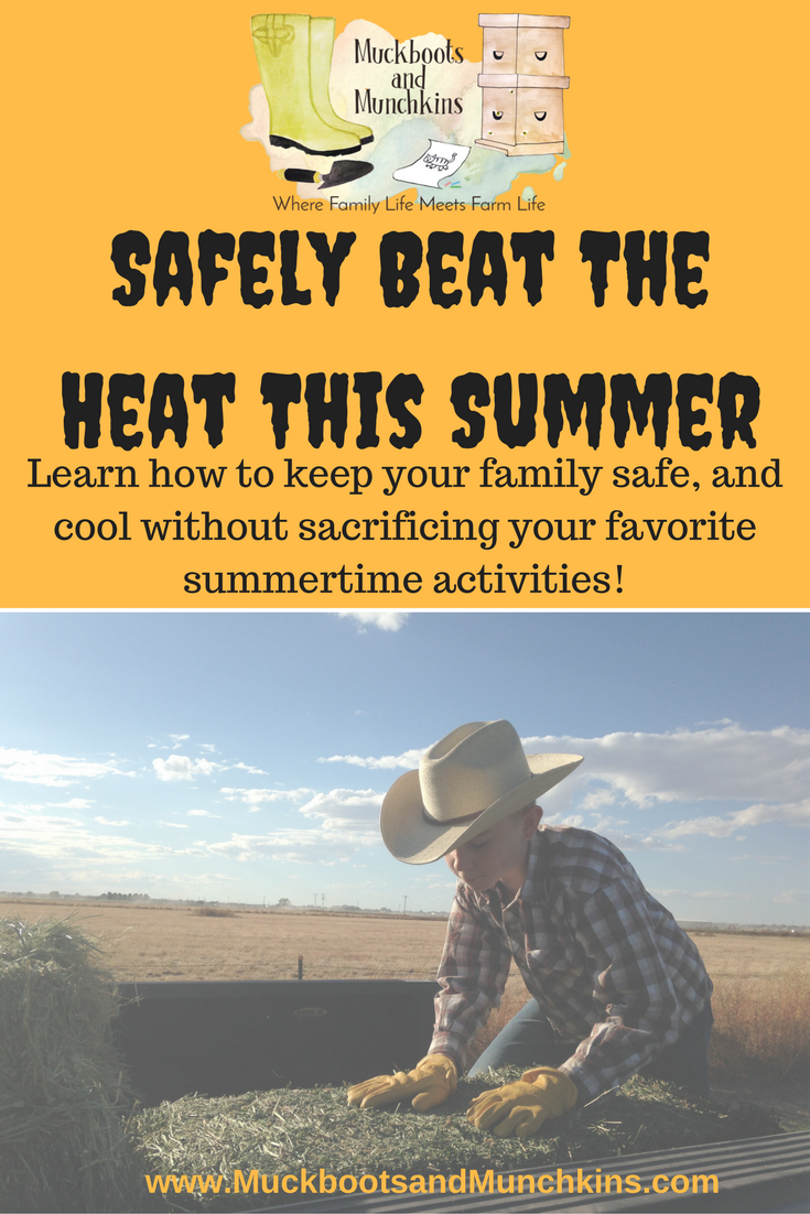 The dog days of summer are fast approaching. The heat of summer can be dangerous, learn how to safely enjoy the summer, or work outside during these hot days. Protect yourself and your family from these dangers.