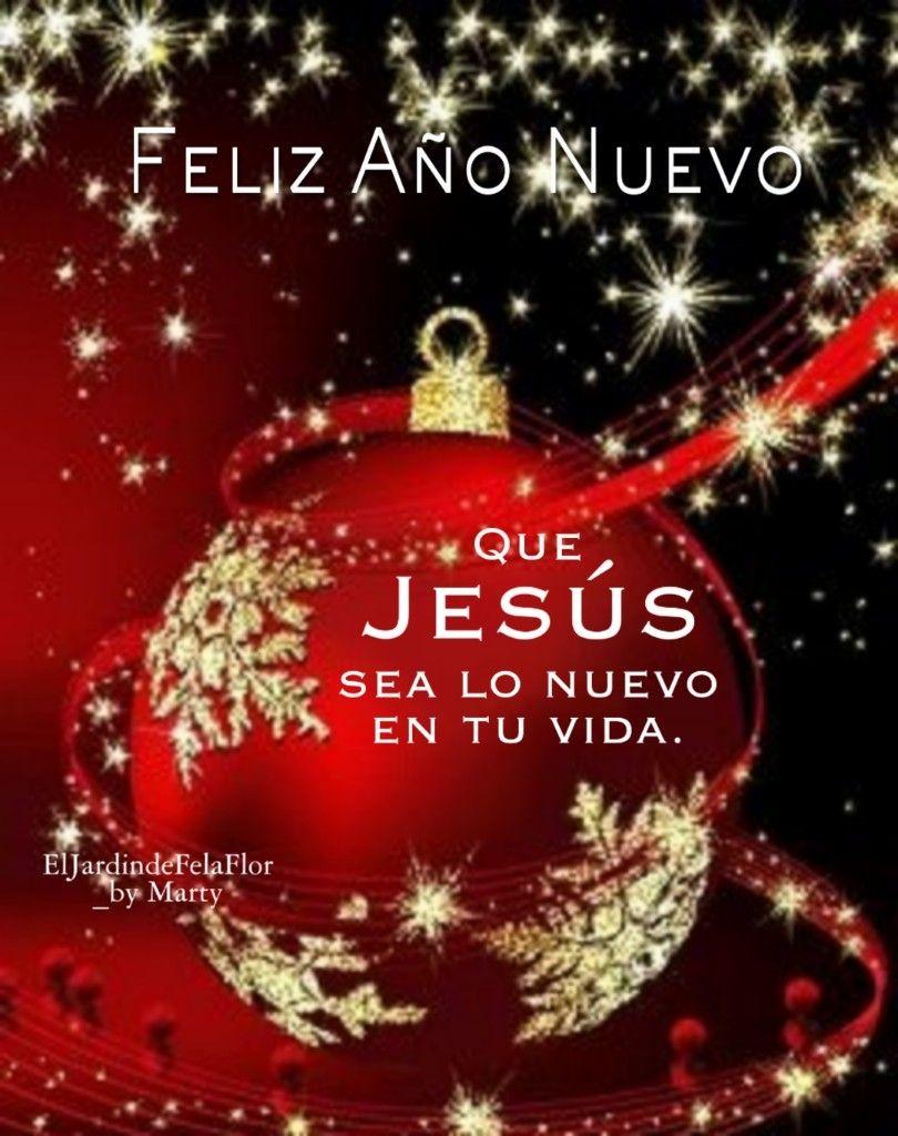 Pin De Guadalupe En El Jardín De Fela Flor Buenos Dias De Navidad Saludos De Buenas Noches Frases Bonitas De Navidad