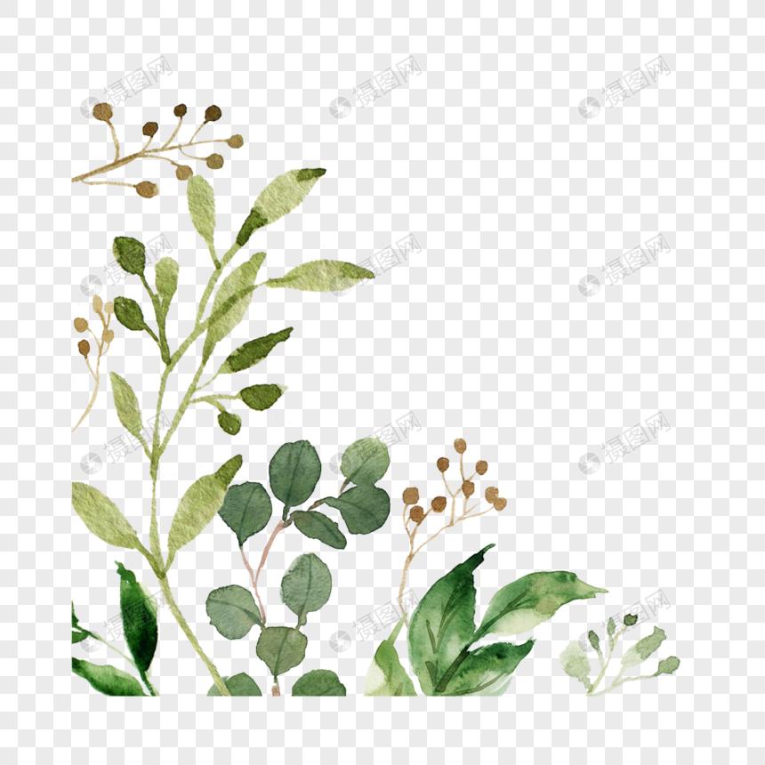 Watercolor Green Plant Border Vector Material Watercolor Border Watercolor Plants Plant Wallpaper