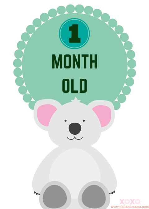 picture relating to Printable Baby Month Signs known as Tremendous Lovable and Absolutely free Printable Animal Themed Child Month to month
