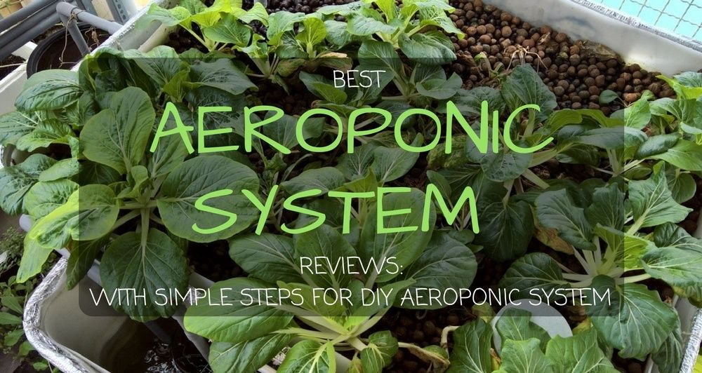 Best Aeroponic System Reviews For 2018 With Simple Steps 400 x 300