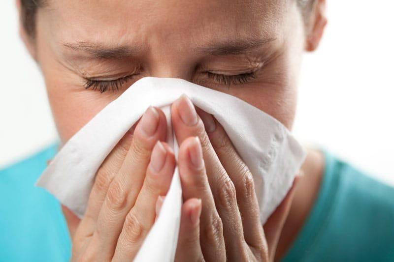 Ini Dia Rahasia Supaya Rhinitis Alergi Bisa Sembuh Dengan Cepat Alergi Penyakit Stevia
