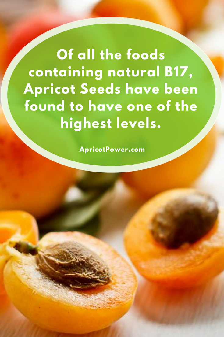 WORLD FOOD DAY - Of all the foods containing natural B17