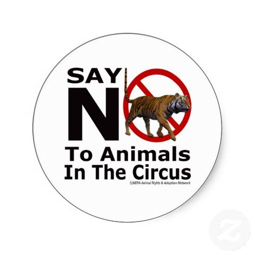 Say no to animals in circuses