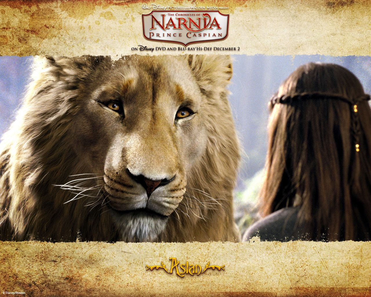 Wallpaper of Aslan for fans of The Chronicles Of Narnia. | For ... for Narnia Reepicheep Quotes  155sfw