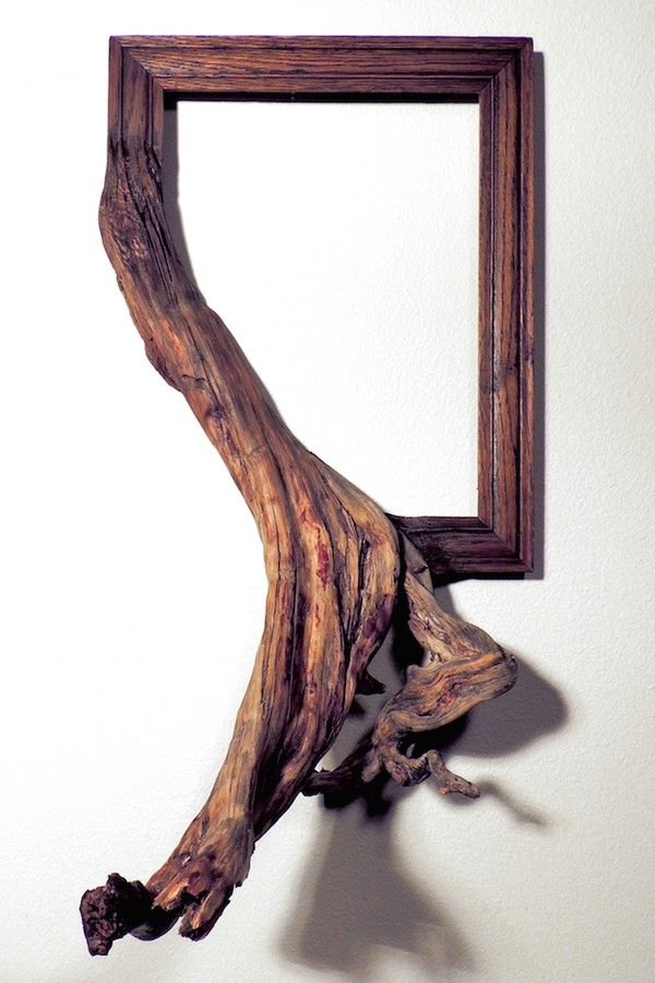 Twisted Picture Frames Fused with Tree Branches - VICE