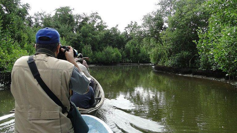 Humedal del Refugio de fauna Delta del Cauto