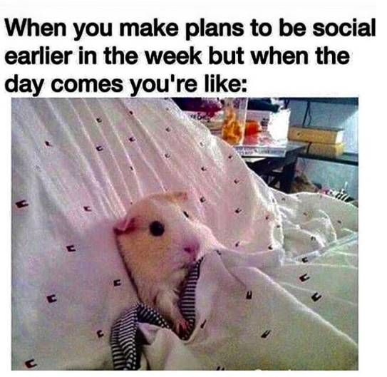 15 Memes That Perfectly Describe Your Social Life With Chronic Illness