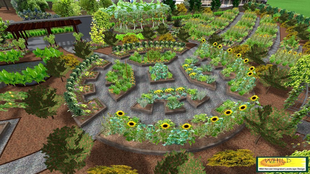 In permaculture garden design emphasizes patterns of for Community garden designs