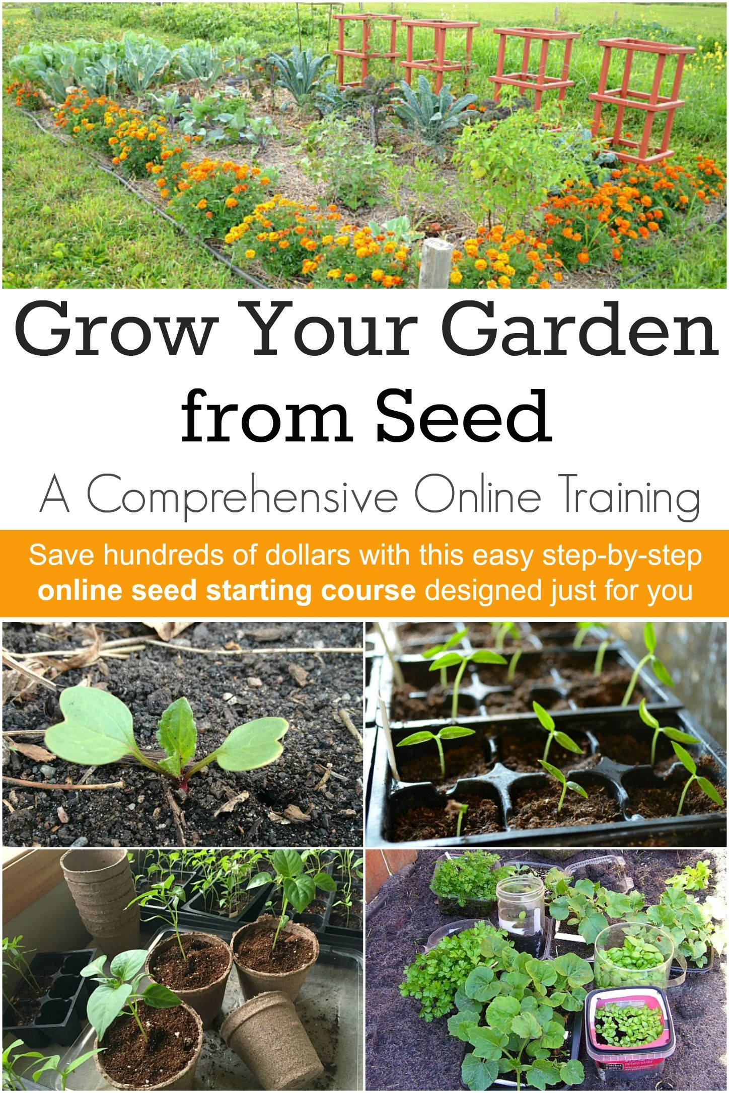 Online Seed Starting Course Learn How To Grow Seeds In This
