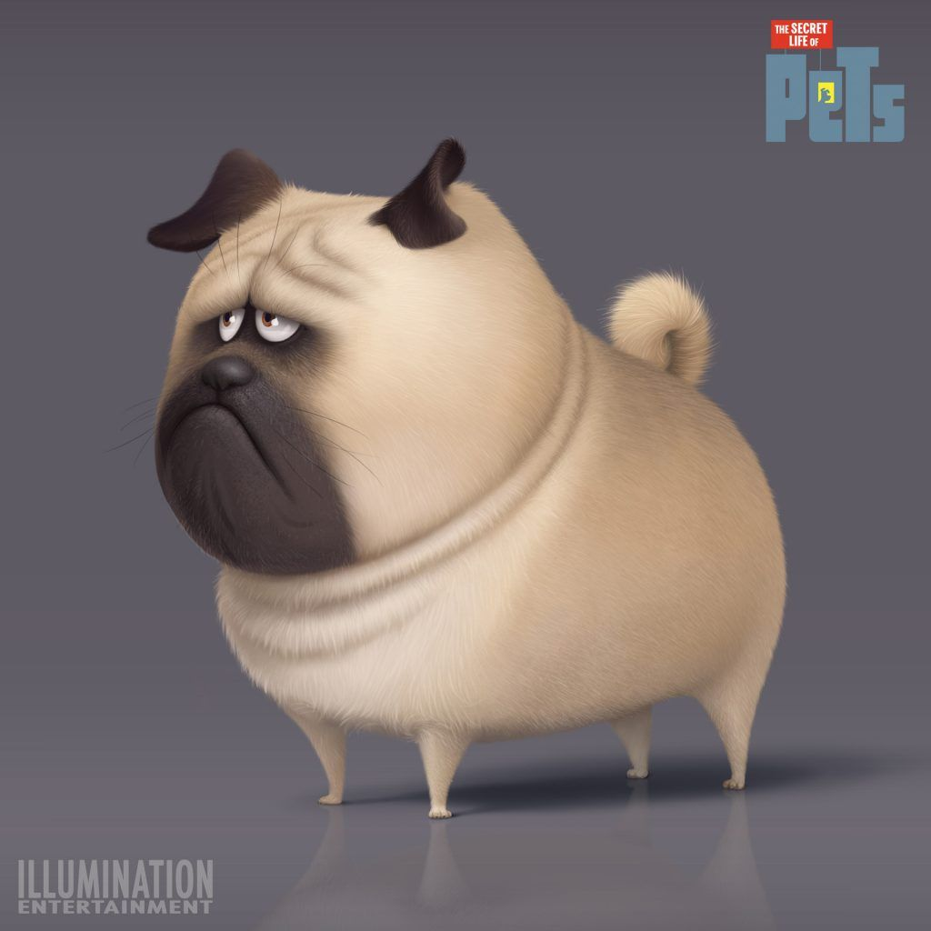 Secret Life Of Pets Poster 40 Printable Posters Free Download