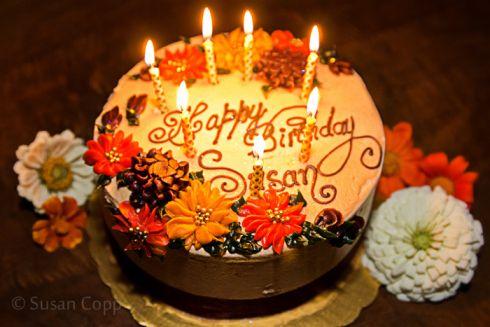 Project 365 Birthday Cake Neat O Nummy Treats Birthday Cake