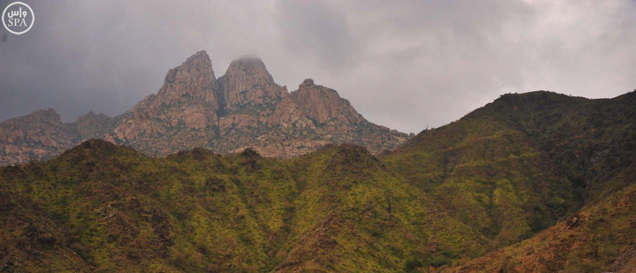 صور الباحة تلبس حلة خضراء بعد أمطار غزيرة Natural Landmarks Landmarks Grand Canyon
