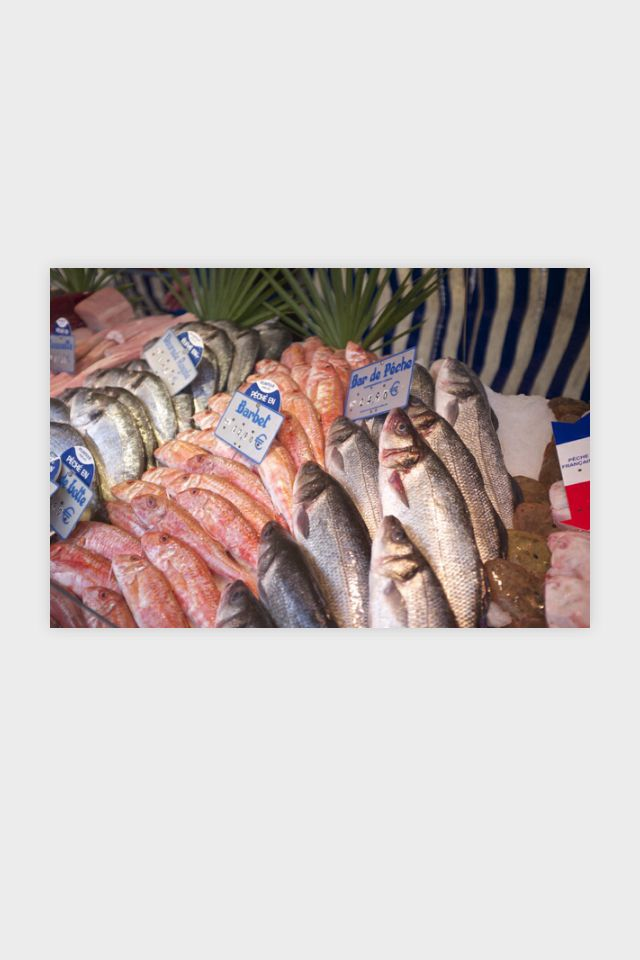 fish at paris market ©emmaburgon emmaburgon.com