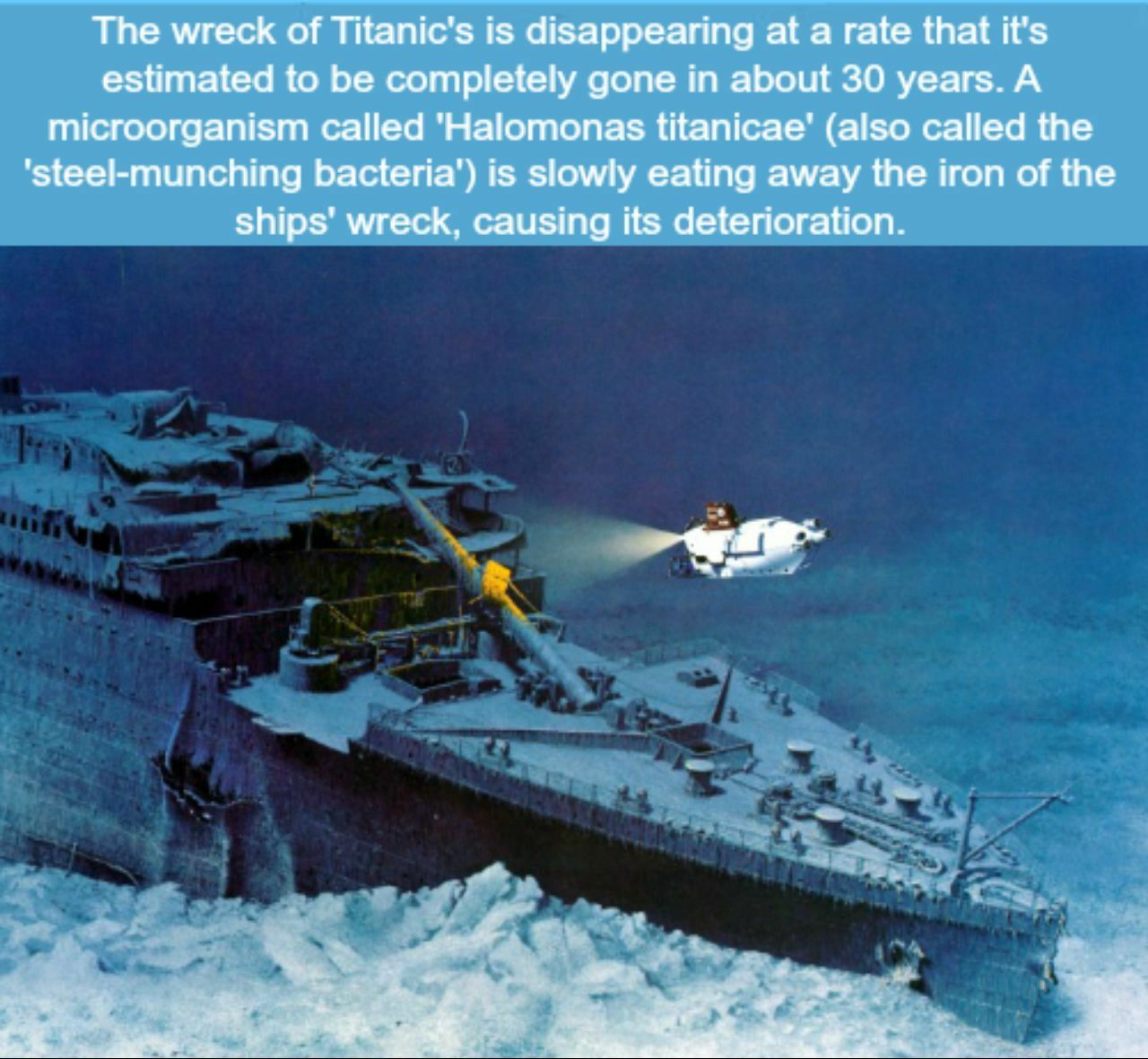 The Wreck Of The Titanic Is Being Eaten Away