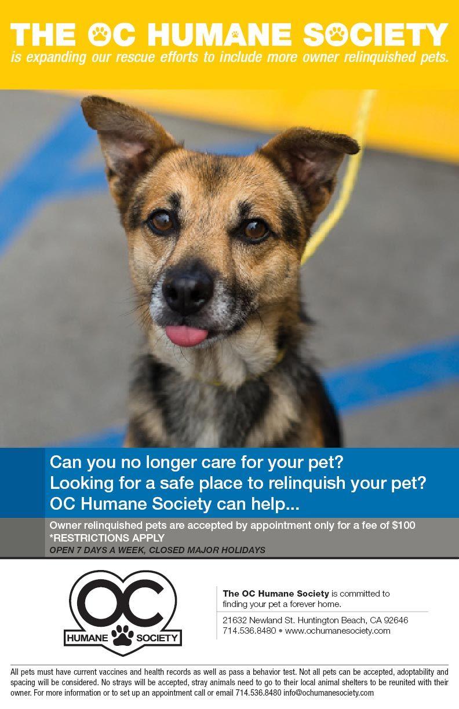 The OC Humane Society in Huntington Beach Dog adoption, Pets