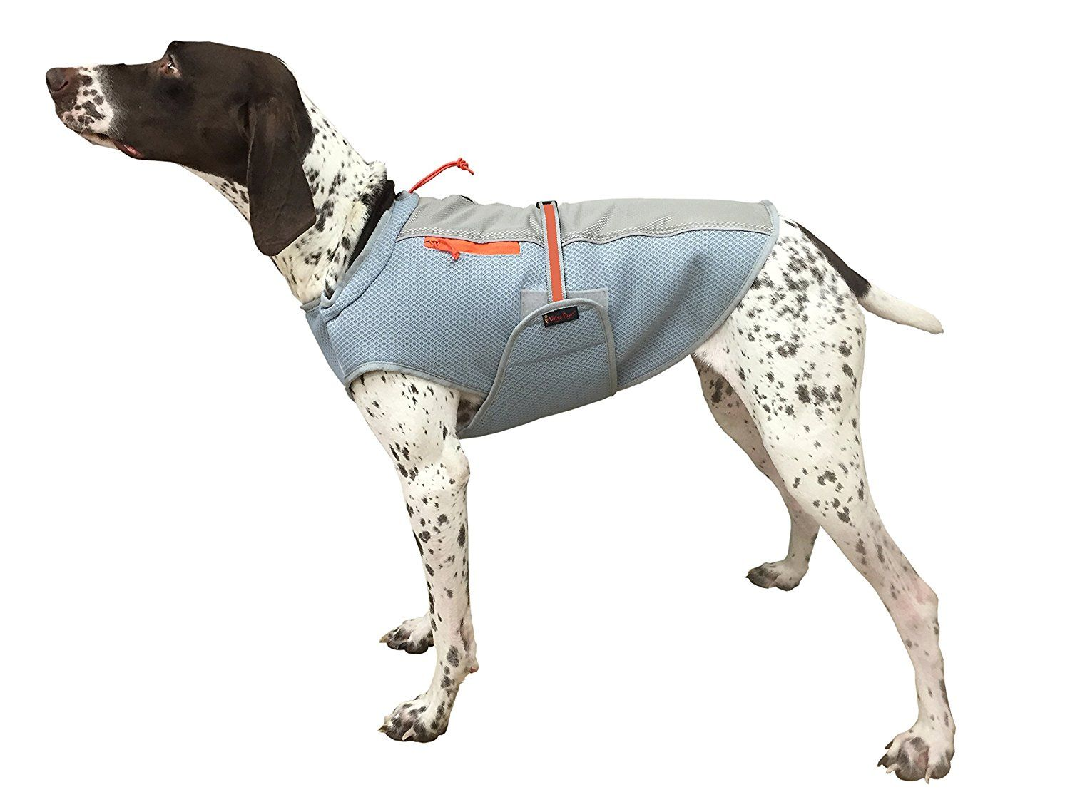 Ultra Paws Ultra Cool Dog Coat *** Want additional info