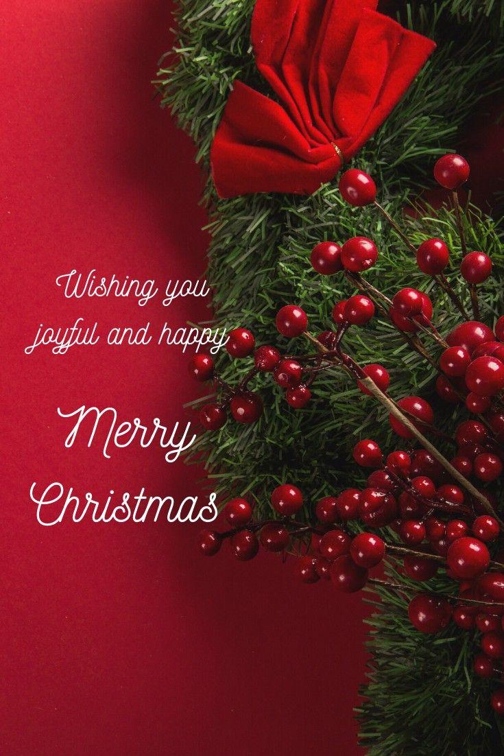 #merrychristmas #christmas wishes#joy#christmastime #christmas #christmastree #xmas #christmasdecor #merrychristmas #christmasiscoming #christmaslights #christmasgifts #winter #christmasdecorations #christmasspirit #christmascountdown #santa #christmasmood #santaclaus #holidays #christmasday #holiday #snow #christmaseve #christmasgift #christmasmagic #december #christmasparty #love #instachristmas