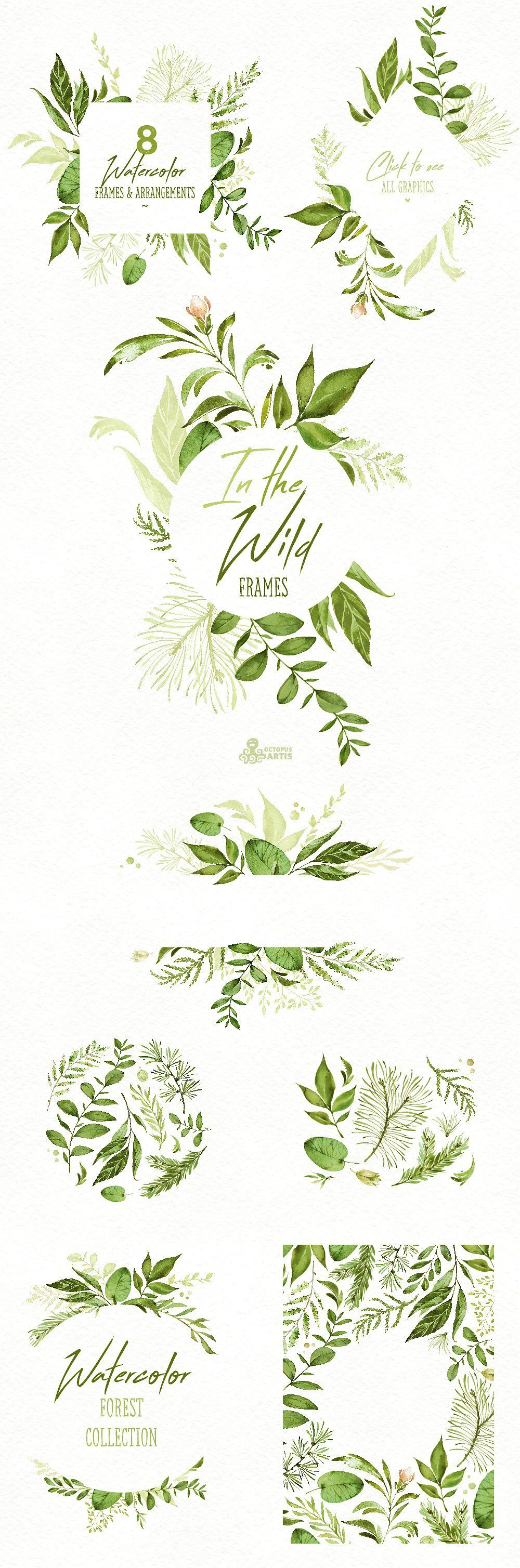 In the Wild. Forest Collection - Illustrations - 3