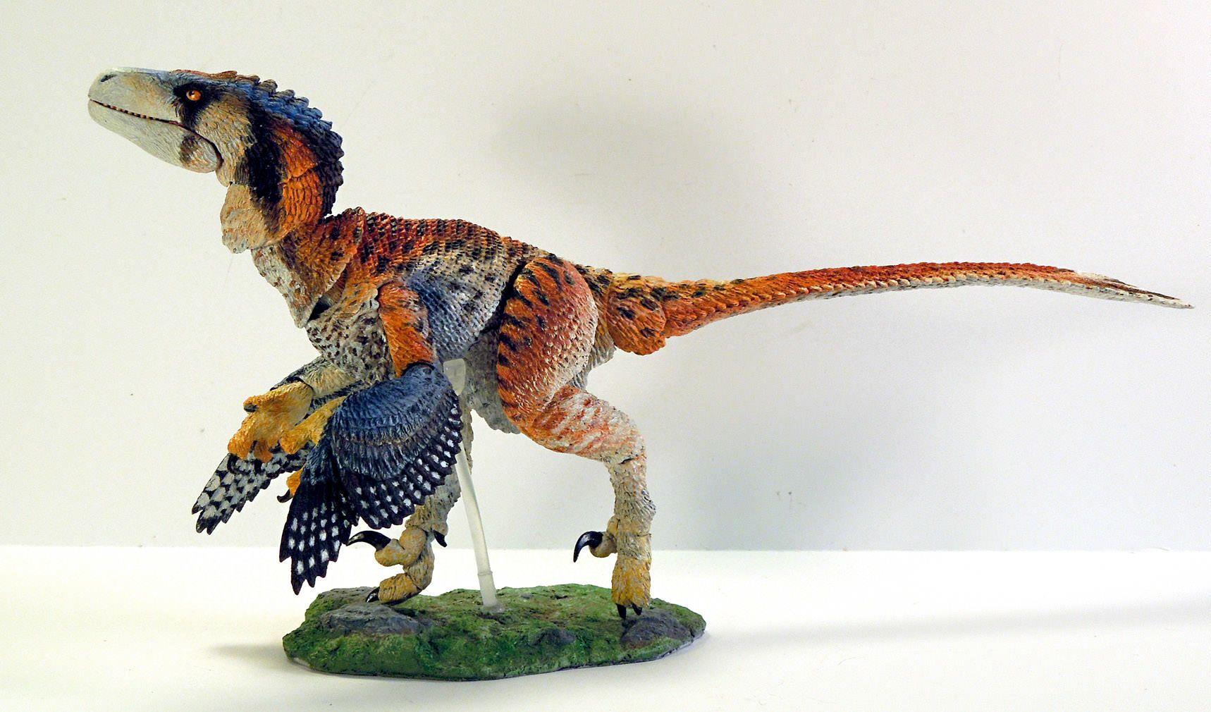 Dromaeosaurus Albertensis Fans Choice Welcome Creative Beast
